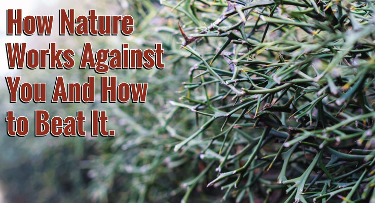 How Nature Works Against You | And How To Beat It